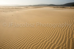Large open stretch of beach (JFJacobszPhotography) Tags: wind lanscape natural stretch setting nature water ocean unspoiled lines space easterncape miles texture open coast empty hamburg southafrica beautiful salt waves coastal dunes unpopulated sand beach coastline kilometers sea