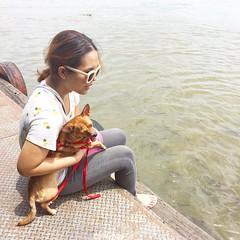 เอาชิวาชิวากลายพันธุ์มาให้อาหารปลาค่ะ 💗💗💗 #แม่ก็คือแม่ #จริตอั้มพัชราภา #happymothersday #nong_meepooh #chihuahua #dog #princeofchihuahua #เจ้าชายแห่งวงการชิวาวา