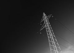 (Török) Tags: blackandwhite redfilter polarizer monochrome outdoor sky landscape field