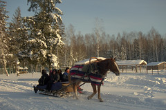Ах-ты зимушка-зима (moscouvite) Tags: heleneantonuk sonydscrx100m2 hiver nature belorussia biélorussie vacances
