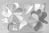 "MACRO MONDAYS  ""JUST WHITE PAPER"" (vittorio_colombo) Tags: justwhitepaper macromondays d800 105mmf28"