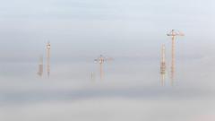 Mersey Gateway in the fog (Tim Furfie) Tags: runcorn widnes bridge fog inversion construction crane