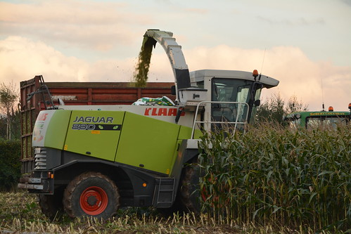 Claas Jaguar 890 Self Propelled Forage Harvester