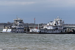 MV Buck Johnson-MV Martha Mac_4500 (Porch Dog) Tags: 2017 garywhittington kentucky nikond750 fx nikon200500mm outandabout january winter towboat barges tennesseeriver water