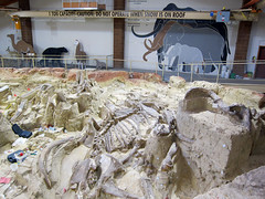 The Mammoth Site (pr0digie) Tags: southdakota hotsprings mammothsite pleistocene sinkhole mammoth bones excavation fossils