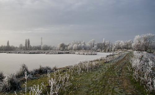 Winterpolderland