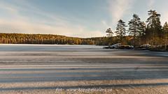 20170113099604-2 (koppomcolors) Tags: koppomcolors håltebyn värmland varmland sweden sverige scandinavia