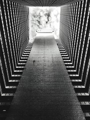 Adapted To The City Architecture Built Structure Pattern The Way Forward Low Angle View Indoors  No People Day Sky Cloud - Sky Blackandwhite Monochrome Modern Architecture Shapes And Forms Concrete Textures And Surfaces Futuristic Lookingup Design Square (Eugene Kong) Tags: adaptedtothecity architecture builtstructure pattern thewayforward lowangleview indoors nopeople day sky cloudsky blackandwhite monochrome modernarchitecture shapesandforms concrete texturesandsurfaces futuristic lookingup design square lightanddark