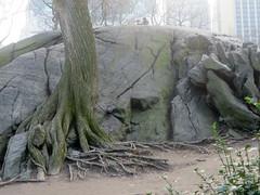 Central Park II (edenpictures) Tags: centralpark newyorkcity nyc manhattan