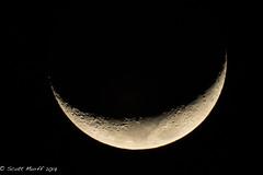 2017 Jan 31 Crescent Moon 01 (smurff66) Tags: moon night crescent