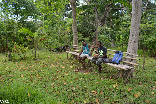 interview on bamboo bench