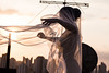 Pagan Poetry (BBarros) Tags: artnude halfnude fabric girl skycraper rooftop dance movement sunset