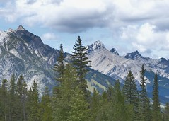 BANFF26082016_001 (FLOSSY474) Tags: canadianrockies banffnationalpark canada