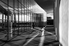 crossing the light lines (moltofredo) Tags: bw black white sw schwarz weiss noiretblanc monochrome street streetlife streetphotography silhouette human urban reflections spiegelung schatten shadow