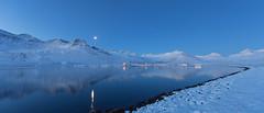 Blue morning (*Jonina*) Tags: iceland ísland faskrudsfjordur fáskrúðsfjörður reflection speglun winter vetur snow snjór blue blár moon tunglið jónínaguðrúnóskarsdóttir 25faves 500views 1000views 50faves