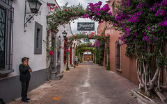 2016 - Mexico - Tequisquiapan - Wine Bar (Ted's photos - For Me & You) Tags: 2016 cropped mexico nikon nikond750 nikonfx queretaro tedmcgrath tedsphotos tedsphotosmexico tequisquiapan vignetting tequis guillermoprieto guillermoprietotequis guillermoprietotequisquiapan people peopleandpaths bougevilla steps cellphone signs streetscene streetlamp walkway magictownofmexico pueblomagico