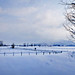 Look, where did the mountains go?? (rotraud_71) Tags: winter salzburgerland grödig fields snow buildings fences cloudsofsnow scenicsnotjustlandscapes
