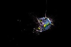 water splash (jaene36) Tags: brocken art splash water color studio indoor explosion crazy fun creativ