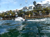 SnorkelShelley-32 (frannyfish) Tags: shelley beach manly snorkel