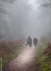 Sopley Common Foggy Dog Walk-1.jpg (Robert M Sadler) Tags: dorset sopleycommon eos winter 70200f4l canon