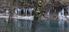 Icicles Over Oregon's Little No. Santiam River (Joan Gray) Tags: northfork icicles