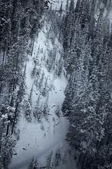 _DSC1356 (andrewlorenzlong) Tags: canada alberta banff national park banffnationalpark gondola banffgondola sulphurmountain sulphur mountain