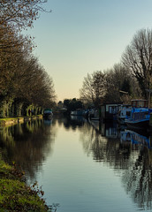 Grand Union Canal, Yiewsley (CJPhotography UK) Tags: nature natur natural landscape scenery scenic urban urbannature uk london canal grandunioncanal river boat reflection sky skyline sun sunlight light lighting yellow blue green trees tree water branch branches outdoors evening winter telefoto canon