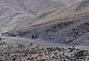 Mustang_56 (Oreste Villari) Tags: neal tibet himalaya manthang mustang lho people architecture architettura colours tibetan budddhism religions buddismo