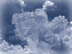World of snow crystals (somareja*pictures) Tags: kunstimwinter macroaufnahme macrodreams macro em10 olympusdigital outdoor winterbild kristall beauty winter snowcristals schneekristalle schnee flickr markusreber somarejapictures