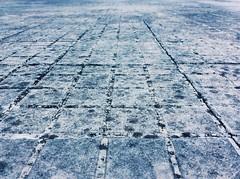 #floor #Macro #tarde #atardecer #Guatemala #Villanueva #MiTierra (Esau16) Tags: macro atardecer floor guatemala tarde mitierra villanueva