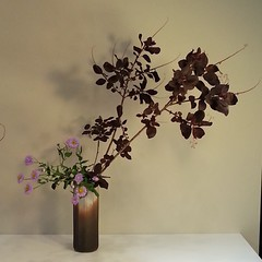 Mari's #ikebana