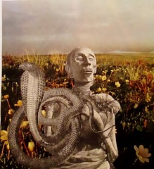 The Wisdom of the Ages Is Protected (joannmuench) Tags: flowers strange field collage mystery vintage outdoors cobra snake antique surrealism surreal eerie retro dada mummy secrets magicrealism cutandpaste coiledsnake desertloca joannmuench