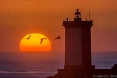 _4LN9903-sunset on Kermorvan (Brestitude) Tags: sunset lighthouse bird soleil brittany coucher bretagne breizh phare oiseau couché finistère leconquet kermorvan brestitude ©laurentnevo2015