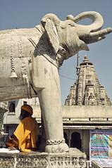 elephant_sadu (smadre) Tags: india elephant indien udaipur holyman sadu