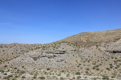 IMG_0068.jpg (DrPKHouse) Tags: arizona unitedstates loco bullheadcity bullhead