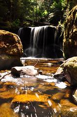 Small waterfall on Creekton Falls track (Photo perspective) Tags: waterfall creektonfalls tasmania