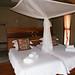 DSC02435 - NAMIBIA 2010   Hoodia Desert Lodge