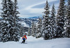aa-2714 (reid.neureiter) Tags: skiing vail colorado mountains snow snowskiing alpineskiing sport sports wintersports