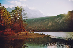 . (Careless Edition) Tags: photography film mountain nature lake heimat home bavaria eibsee bayern germany deutschland alps alpen zugspitze see winter