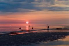 Summerfeeling (Wischhusenpixel) Tags: connywischhusen wischhusenpixel meer insel fanö dänemark sommer sonnenuntergang 2016 sunset