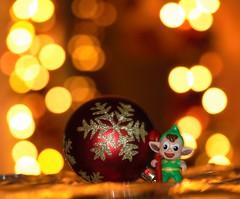 Marry Christmas to everyone... (tonigirl_cro1) Tags: merrychristmas macro macromondayredux2016 redux2016 christmastime holidaybokeh macromondaysholidaybokeh tonigirl toni