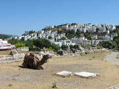 IMG_3251 (Sergio_from_Chernihiv) Tags: 2014 halicarnassus turkey ancient history bodrum