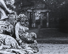 Parco Ducale, Parma (with ghosts) (Giorgio Bordin) Tags: altprocesses lith film cyanotype toning gallic tannic acid bleach