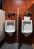 20161220-IMG_2511-Edit Urinals 06 (hirschwrites) Tags: bathrooms earth kirkwood midwestus missouri other stlouis us usa urinals