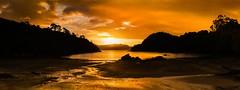 A Golden Shroud For Stewart Island (Jonathan Manning - Luminis Photography) Tags: rocks panorama panoramic tide hills trees sunset bay clouds ocean island newzealand calm inlet stewartisland