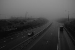 Foggy road (Alexander Oleynik) Tags: road fog crimea дорога туман lamppost bw weather