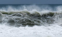 IMG_2892.jpg (sfanshier) Tags: winterwaves beach torreypinesstatebeach ocean torreypinesstatepark waves