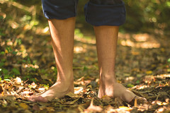 En el bosque (paulina.garces) Tags: bosque arboles vida natural airelibre airepuro