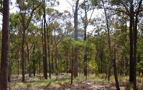 L417 Lyrebird Lane, Millingandi NSW 2549
