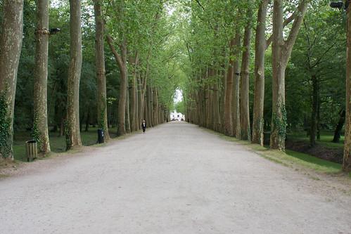 Allée du Château de Chenonceau